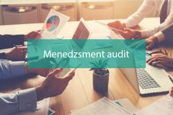 Menedzsment audit
