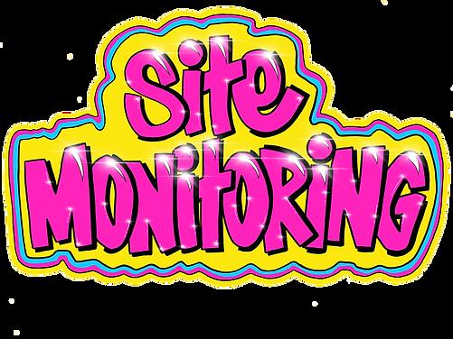HIGHFALLMEDIA. sitemonitoring logo