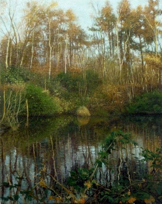 Curden valley hidden pond