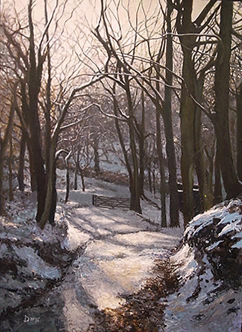 Tockholes Winter Walk No.1