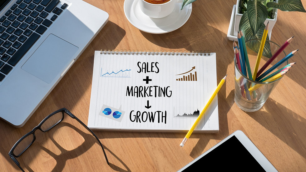 Sales Marketing Strategy
