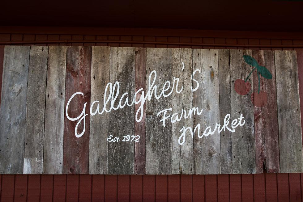 cmm.gallaghers.fall-26.jpg