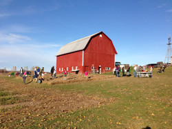 Barn and kids on fall day