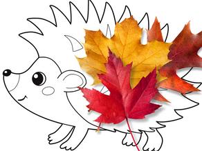 Leafy Hedgehog!