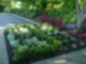 Garden design, maintenance