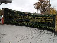 Living walls, green walls, vertical gardening