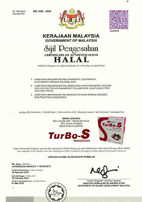Halal TurboS.jpg