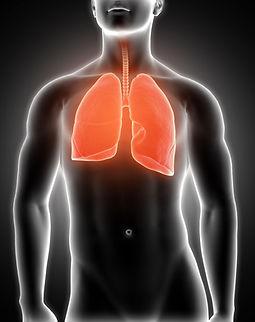 lungs-min.jpg