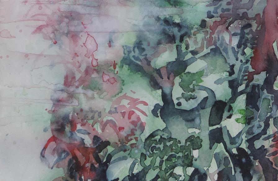 Feuchter Dschungel (ODER: perfumed forest wet with rain)