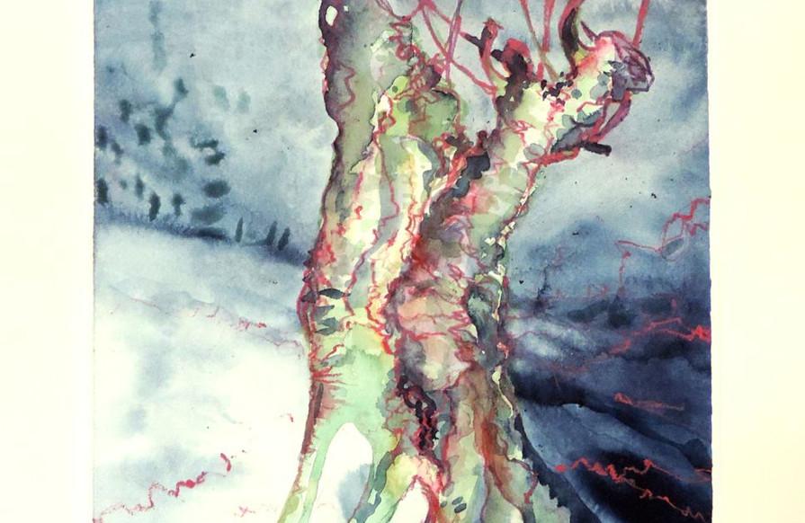 Verloren in den Mangroven
