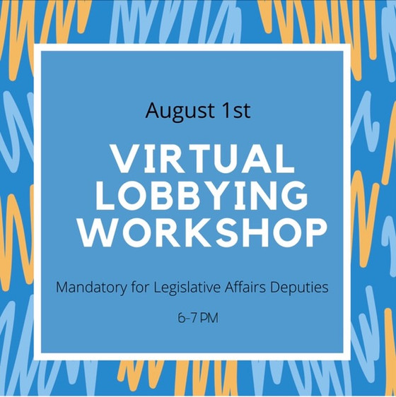 Virtual Lobbying Workshop Recap
