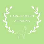 Larch Green Alpacas
