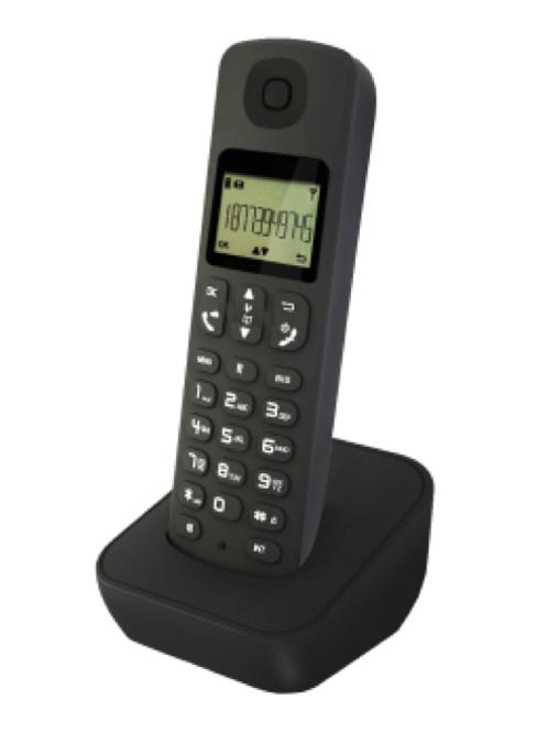 Digital Wireless Phone