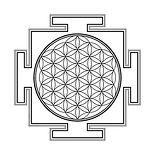 flower of life yantra.jpg