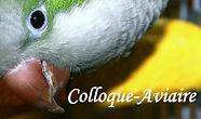 colloque-aviaire.jpg
