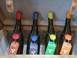 Bodegas Garay- Eco wines