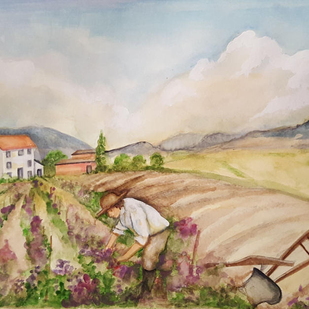 The Common Man Wine Label Watercolor Pai