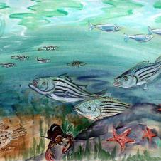 Hampton Beach, Fish Mural
