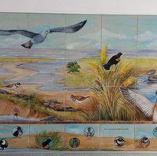 Birds of Hampton, NH with search keys