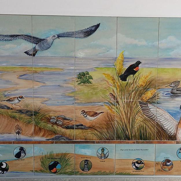 Birds of Hampton, NH with search key. Ha