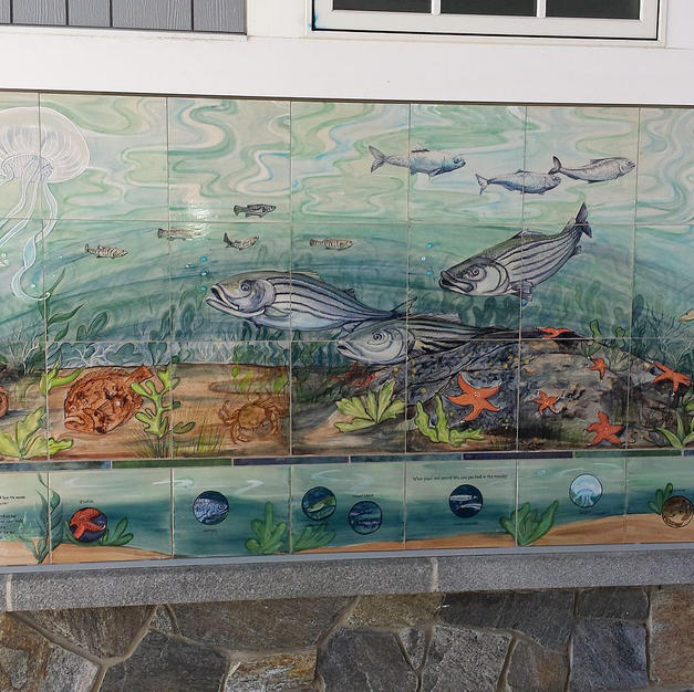 Fish of Hampton Nh with Search Key Tiles
