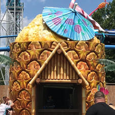 Pineapple Hut