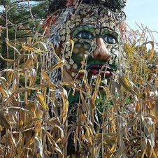 Corn Field Garden Spirit