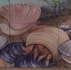 Shellfish of Hampton NH Close-up