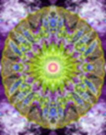 Butterfly FINAL 4x5 copy.jpg