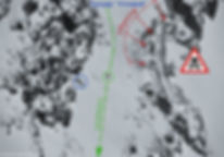 Фрирайд в Хибинах с гидами. Гайдбук по Хибинам