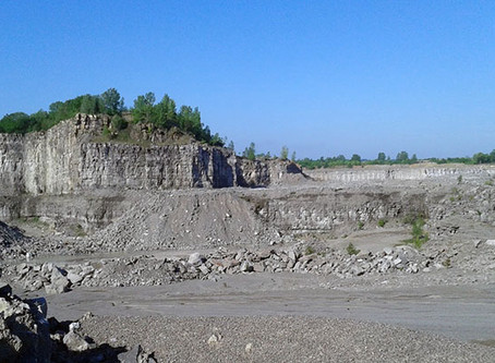 The Alabama Paleontological Society Field Trip Blog