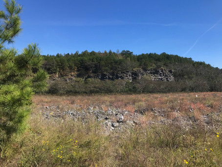 Deep Blue October Sky and Fossils - Walker County