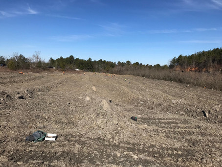 January 2021 Fossil Hunting – Walker County