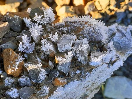 Frosty February Trip to Walker County