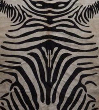 Zebra_1372_large_edited.jpg