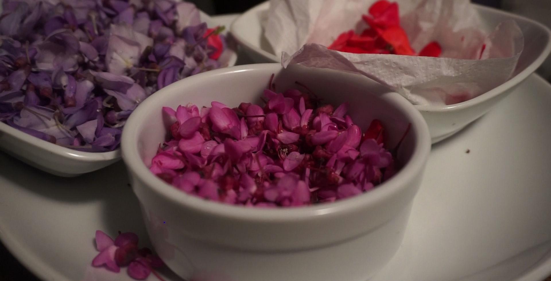 Erguvan Zamanı Menüsü İçin Toplanan Çiçekler