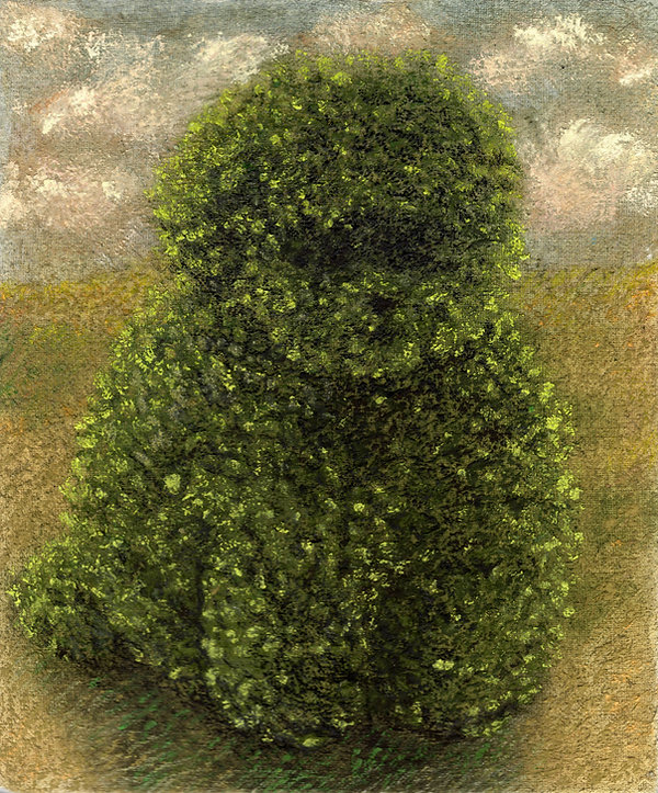 Topiary 10, 9.75 x 11.75 cm, pastel and