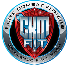 CKM-FIT-SHIELD-1-300x295.png