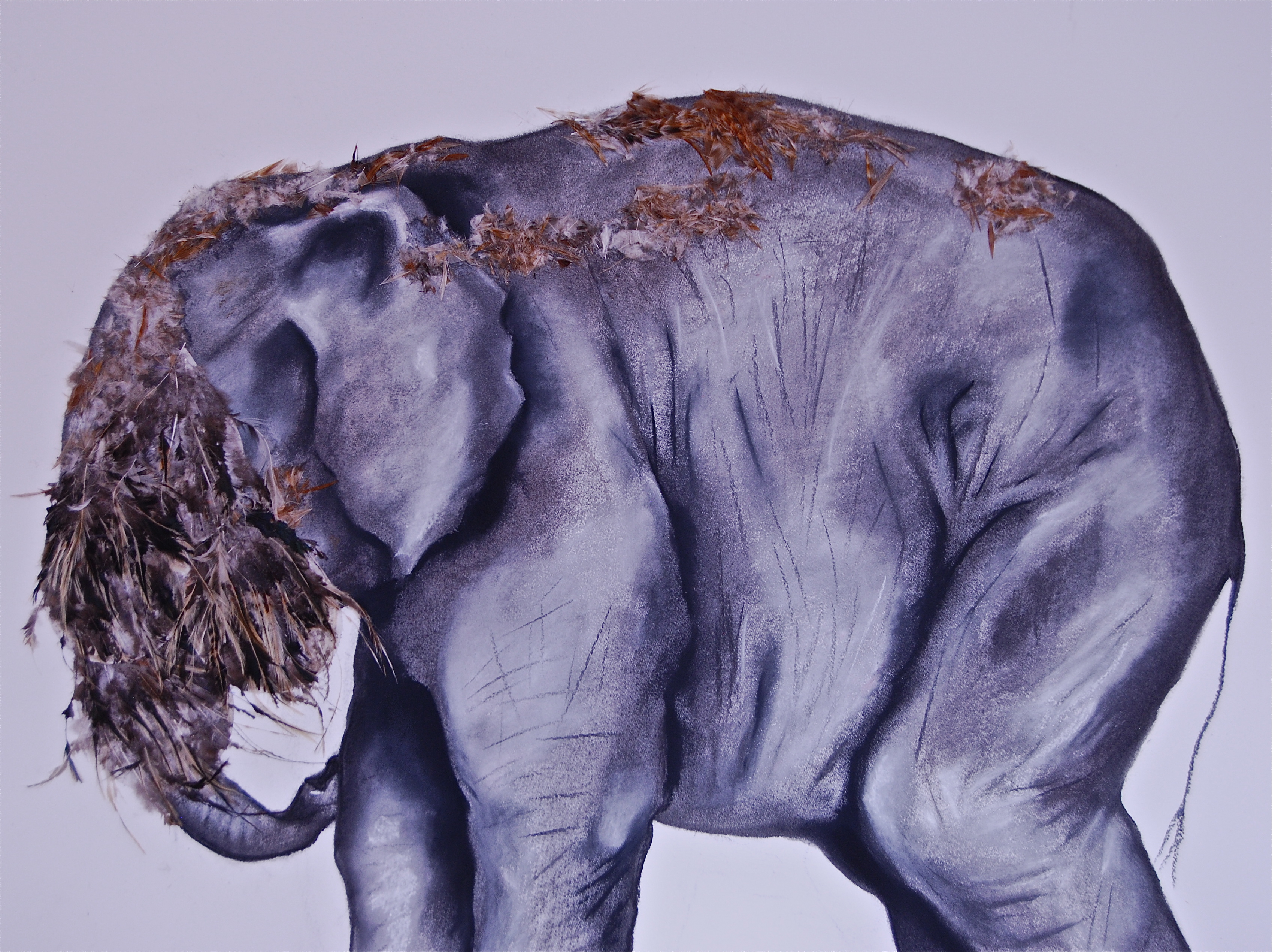 Elephas Africanus 3 (detail)