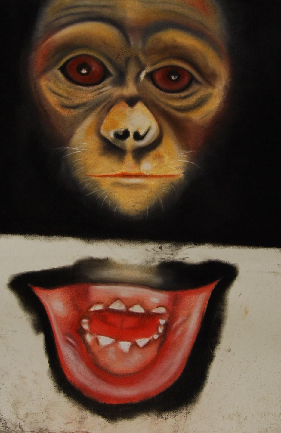 Apes 1 (Katy)