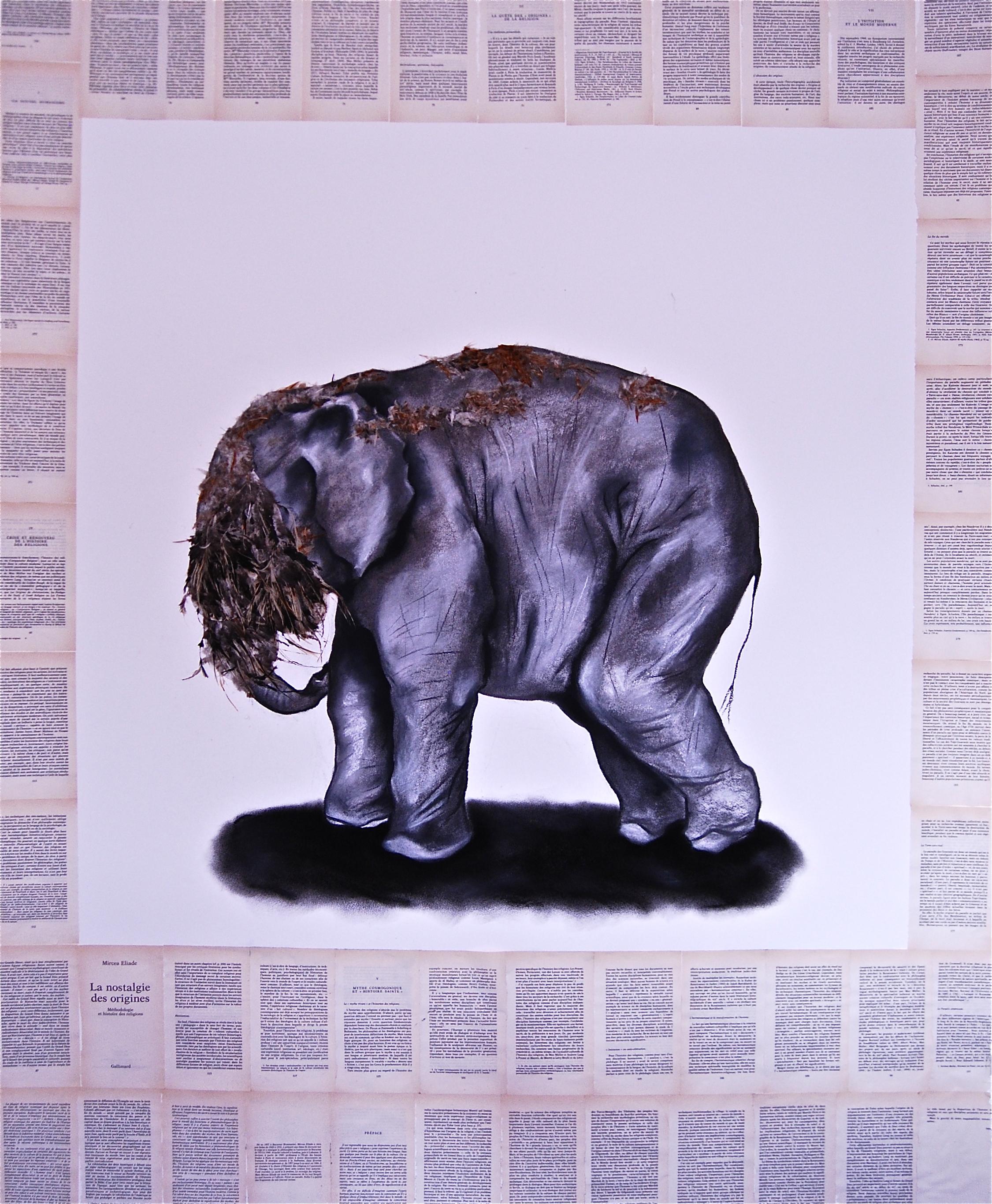 Elephas Africanus 3