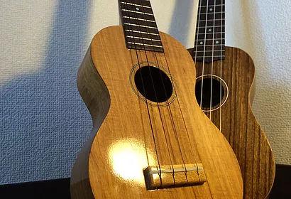 ギター教室 / ウクレレ教室 相模原駅前 アドリブギタースクール ウクレレは優しい楽器【写真】