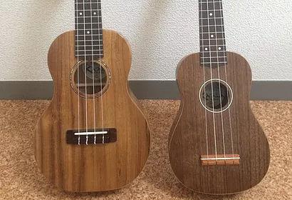 ギター教室 / ウクレレ教室 相模原駅前 アドリブギタースクール ウクレレのサイズ【写真】