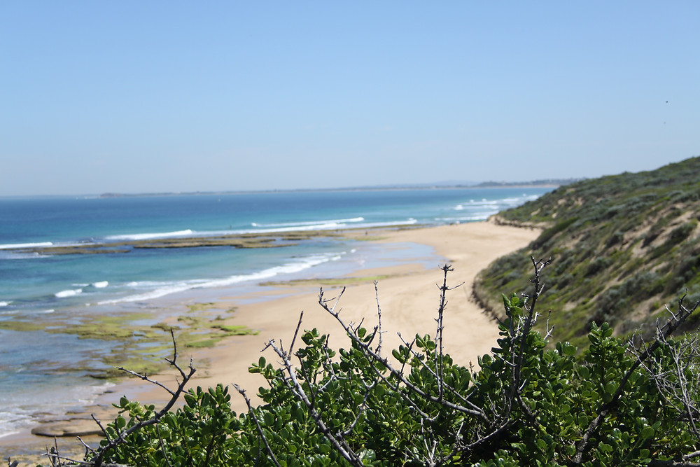 The beautiful environment of the Bellarine Peninsula