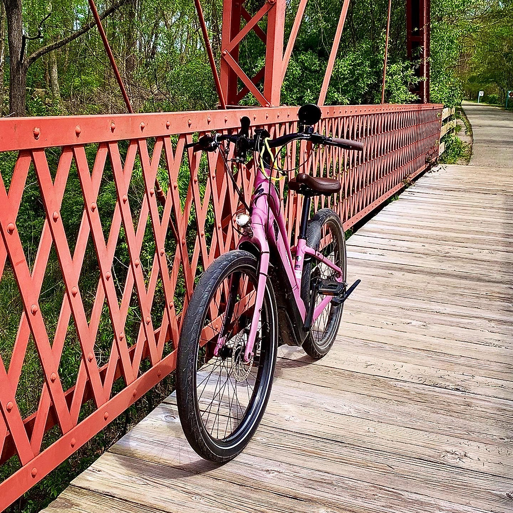 Como Turbo Specialized E-Bike on a Bridge