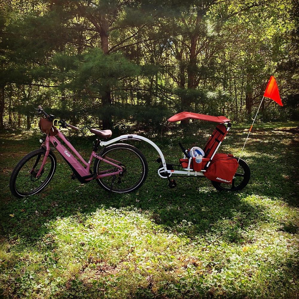 purple e-bike pulling a weehoo trailer parked in a field