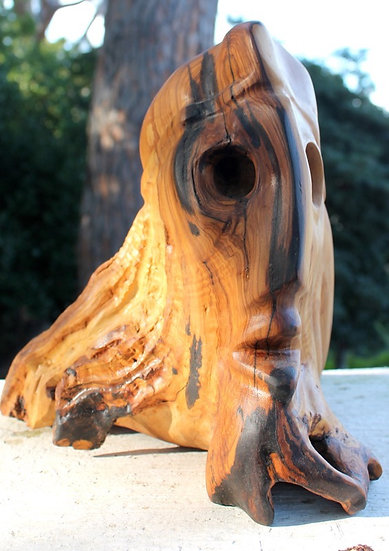 Plinio. Olive Wood Sculpture