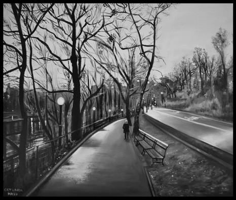 Promenade hivernale à Central Park, NYC