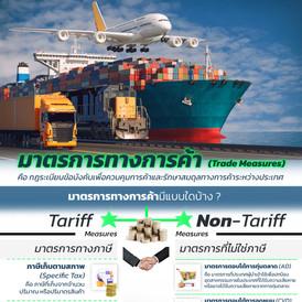 มาตรการทางการค้า (Trade Measures)