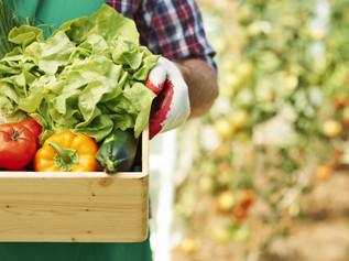 คุ้มครองผู้บริโภคจากสินค้านำเข้าที่อาจมีความเสี่ยงด้วยมาตรการสุขอนามัยและสุขอนามัยพืช